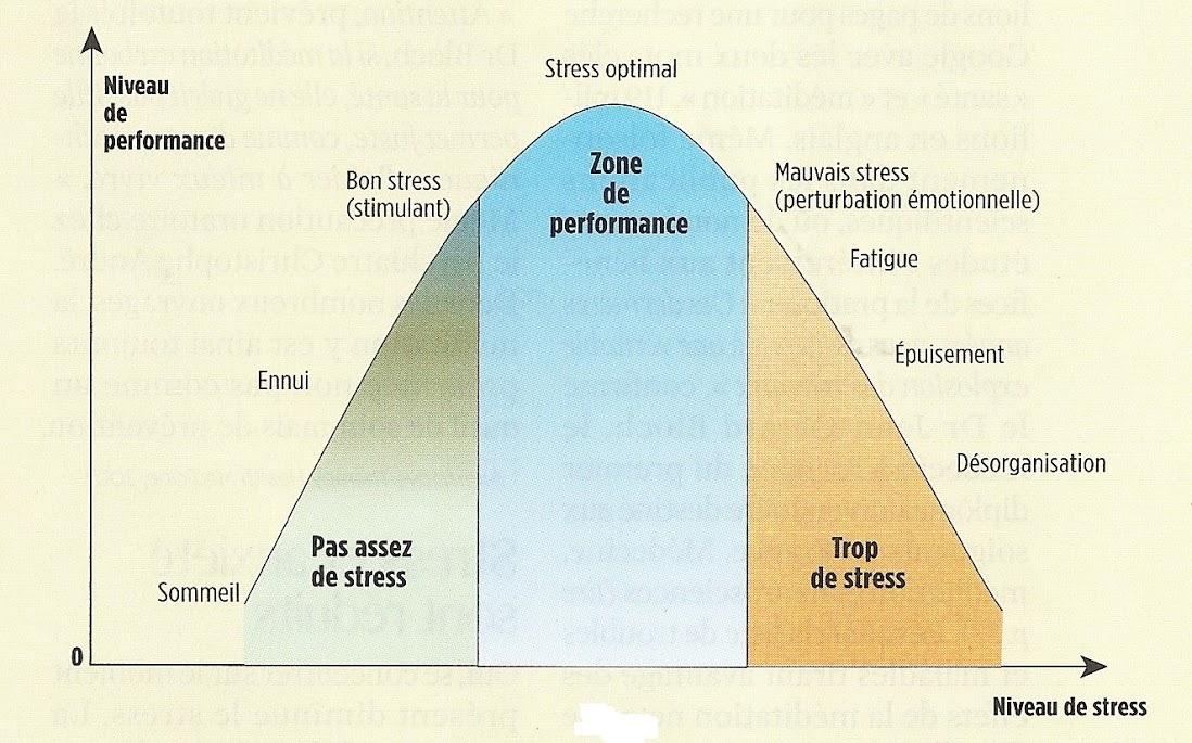 Une pratique régulière réduit les effets négatifs du stress au niveau cellulaire.