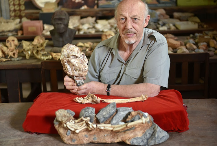 Prof Ron Clarke's work on Little Foot is almost done — he has spent 17 years excavating the fossilised skeleton of one of our early human ancestors. Picture: FREDDY MAVUNDA