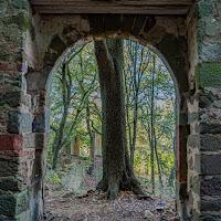 Porta .....in bosco! di