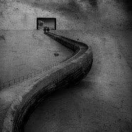 Serpent  by Lurdes Lay Alves - Digital Art Places