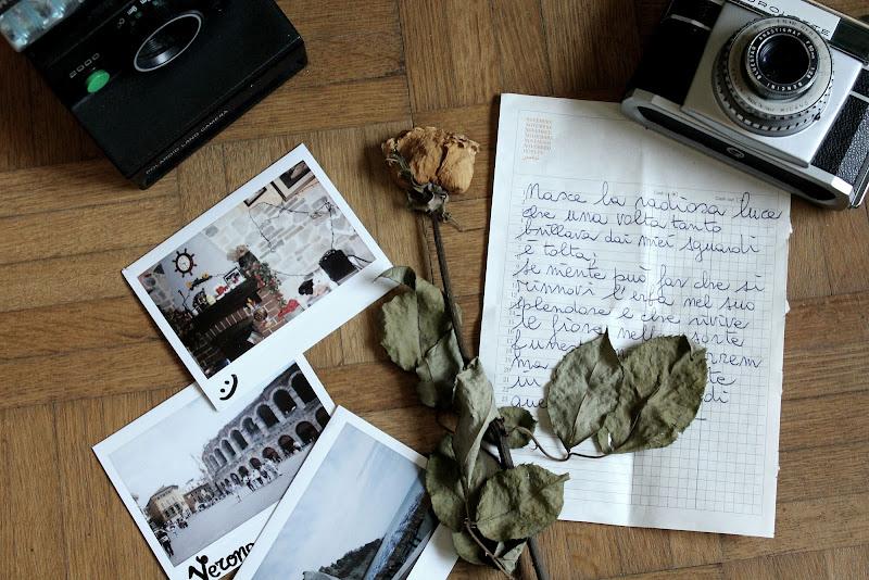 Rose del passato di jessicaviero.ph