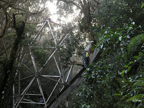 Photo: Here's an interesting example of globalization - Njurna, the putting the walkway together in the Peruvian cloud forest, came from Nigeria just to do this.