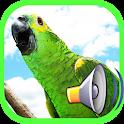 call Bird icon
