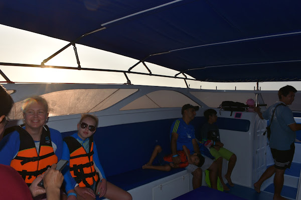 Cruise by speed boat to Phi Phi Island