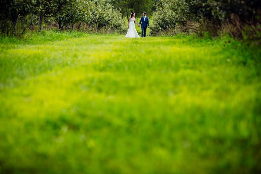 Wedding photographer Milan Lazic (wsphotography). Photo of 24.10.2016