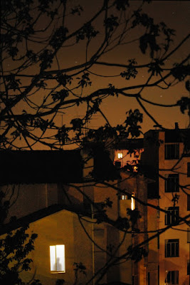 Dalla finestra di silvia_bobo