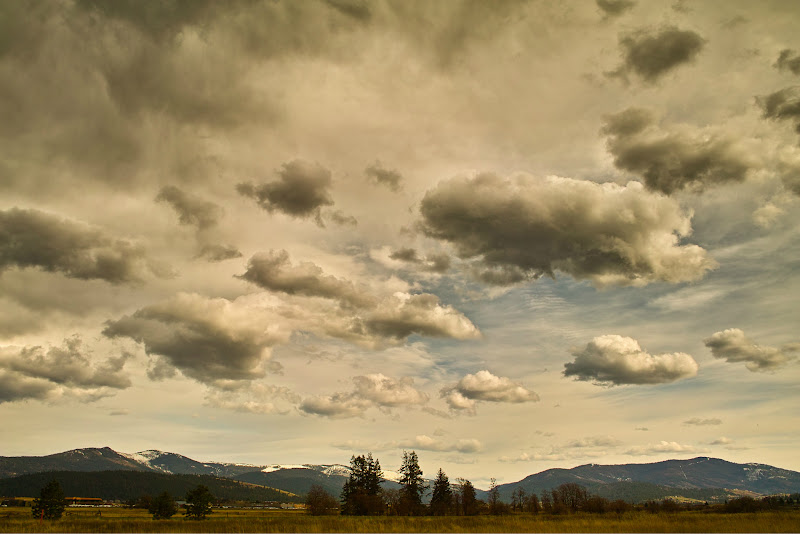 Photo: A view from the Spokane River Centennial Trail, WA