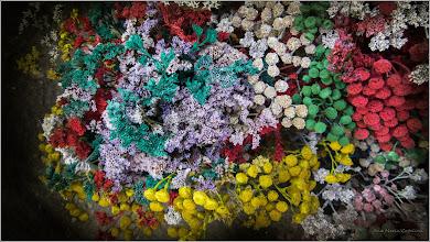 Photo: Flori colorate artificial - din Piata Centrala Agroalimentara - 2017.08.28