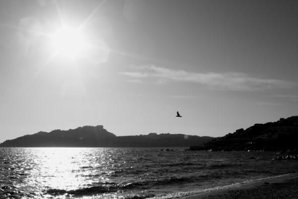Volare sull' acqua.. di Beidge