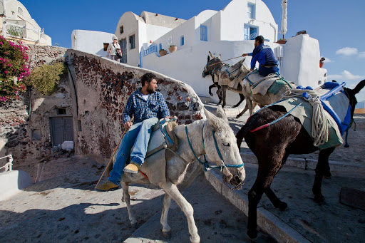 Santorini-donkeys.jpg - Donkeys making their way up the steps of Oia, Santorini.