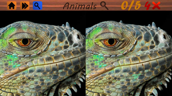 Spot the Differences Free Game- screenshot thumbnail