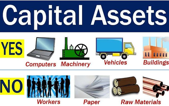 Capital assets showing vehicles and machinery