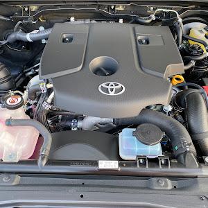 ハイラックス 4WD ピックアップのカスタム事例画像 puskさんの2021年06月16日14:27の投稿