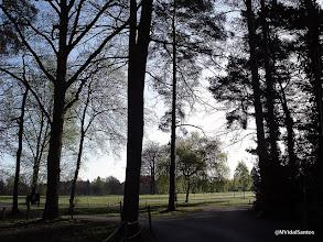 Photo: Crowthorne (Berkshire, UK)