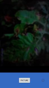 SnapCrop - náhled