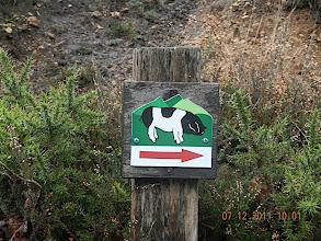 Photo: La route est balisée pour la découverte du porc basque. Nous suivons pour la montée le parcours de Dugène