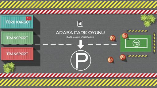 Araba Park Oyunu