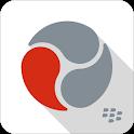 BlackBerry Workspaces icon