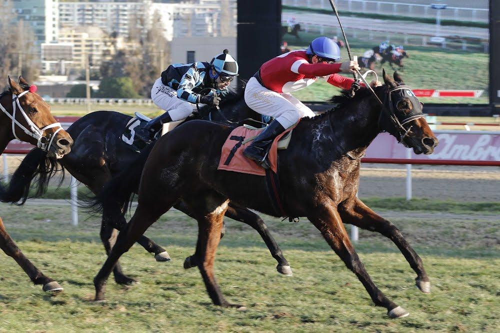 Uno De Honor (Remote) gana Handicap (1000m-Pasto-VSC).
