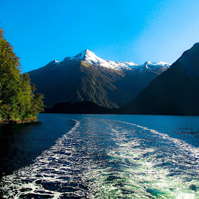 Doubtful Sound, NZ by Alister Munro - Landscapes Waterscapes (  )
