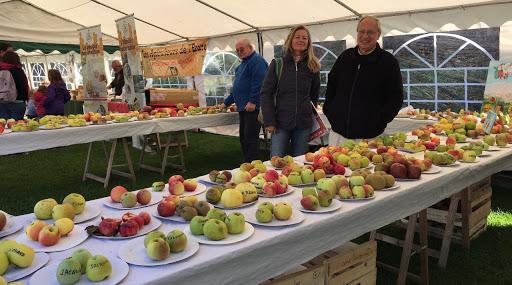 Des dizaines de variétés de pommes exposées ... un régal pour les yeux et les papilles.
