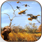 Wild Duck Hunter 3D - Real Wild Hunting Game