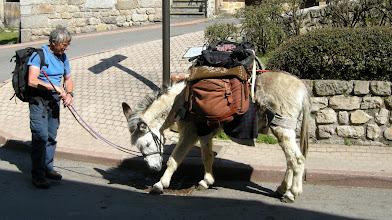 Photo: Un pèlerin à Saint-Alban-sur-Limagnole avec son âne