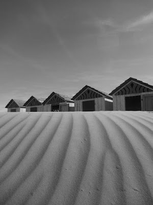 Il silenzio delle dune di Mar955