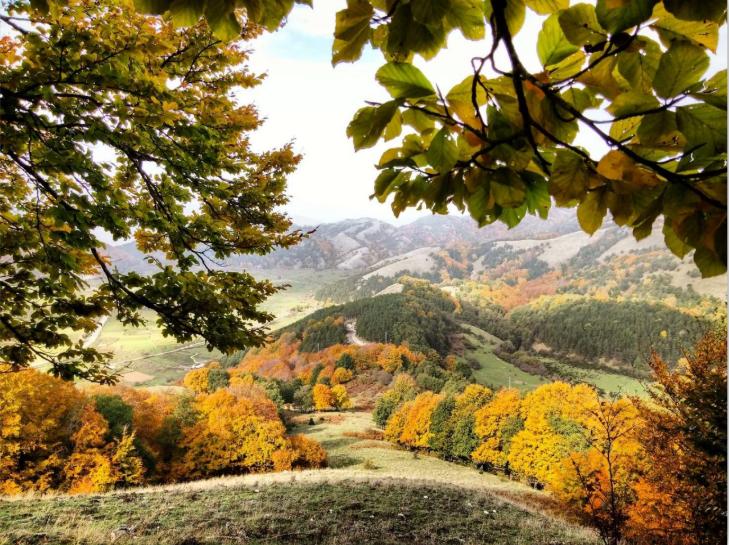 Naturlandschaft aus Irpinien Buchten, Berge und Natur, Herbst