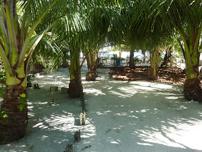 Photo: Pathway to AABANA Beach- and Watersport Resort Malapascua, Mike & Diose´s Beachcottage. Cottage CASABLANCA , +63 905 263 2914-2915, www.malapascua.de Email: office@malapascua.de