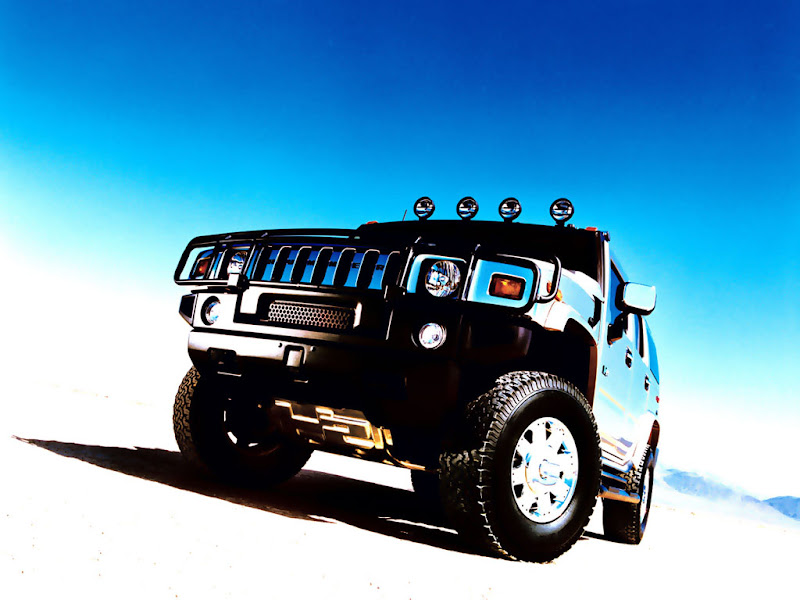 Photo: 2003 HUMMER H2 with brush grille guard. X03CO_SP009