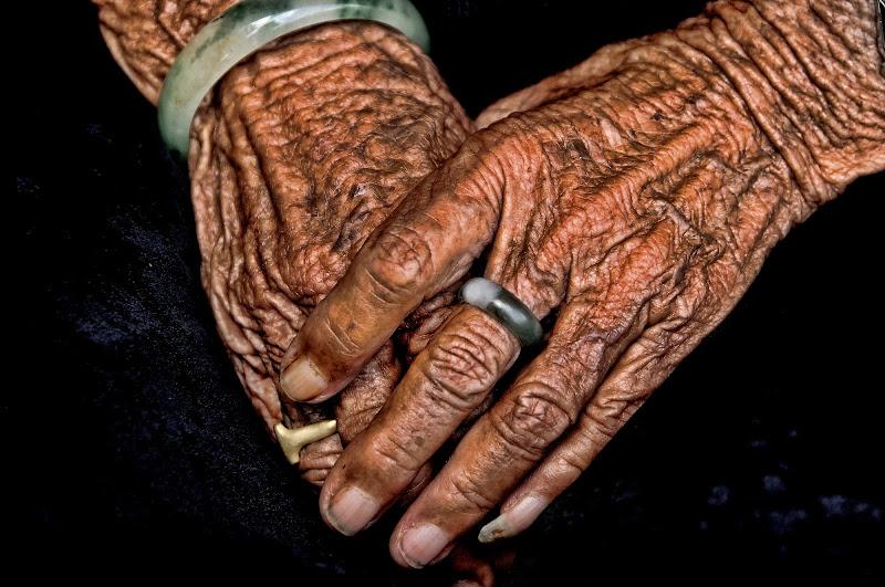 Mani di vitomaso