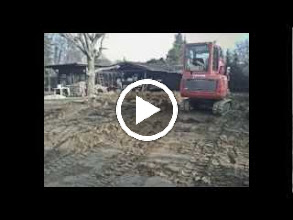 Video: Gradina Germania 04.2012