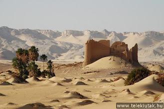Photo: Farfara oázisa, Egyiptom