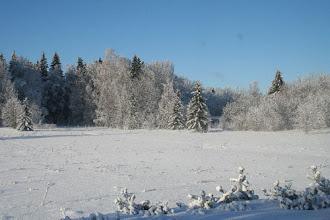 Photo: Sama maisema auringon nousun jälkeen 3.2.2007..