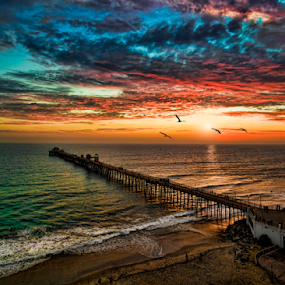 Sunset near the pier by Alan Crosthwaite - Landscapes Waterscapes ( san diego, oceanside, colorful, sunsets, sunset, oceanside pier, pelicans, aerial, coastal )