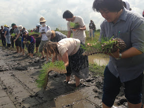 Photo: A training at the Thai Weekend Farmers' Network on the outskirts of Bangkok, where participants tested out dart transplanting. [Photo by Devon Jenkins, Thailand, 2014]