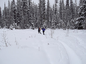 Photo: Bilbo's Bog on snowshoes
