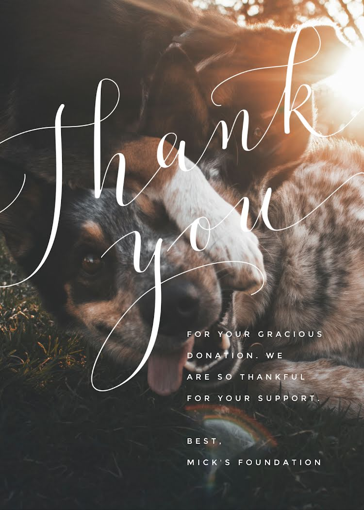 Donation Thank You - Thank You Card Template