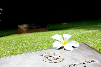 Photo: Year 2 Day 215 - Flower on a Grave