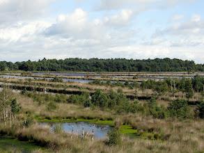 Photo: Blick über das Huvenhoopsmoor.