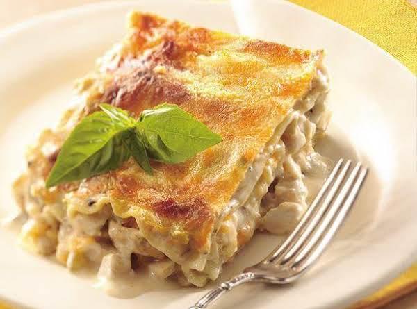 Creamy Chicken Lasagna Recipe