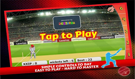 T20 Cricket 2016 2.5 screenshot 404124