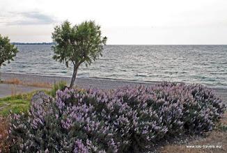 Photo: Ixia. Strand |  Beach