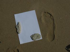 Photo: Pomene. Soviel zu weißem Strand.