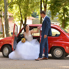 Wedding photographer Ivana Despiћ (fotodespic). Photo of 10.11.2018