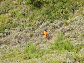Photo: Chaine de l'Etoile, ouverture de la chasse, battue au sanglier