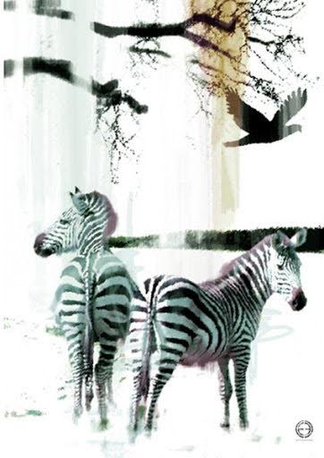 Zebra Fotokonst