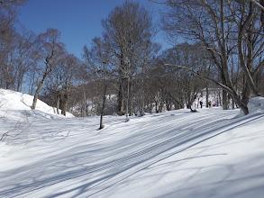 雪面に長い影