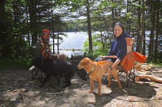 Photo: Owners and pets at Woodford State Park by Linda Carsen-Sperry